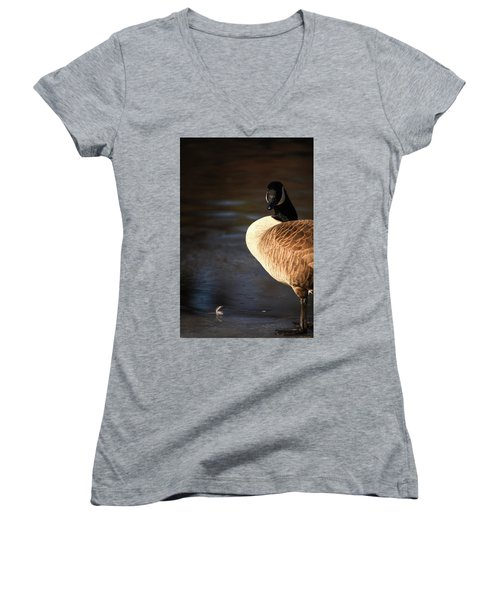 Women's V-Neck T-Shirt (Junior Cut) featuring the photograph On Ice by Karol Livote