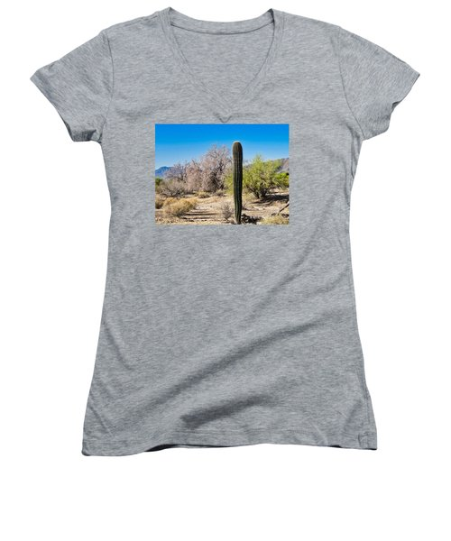On The Ironwood Trail Women's V-Neck