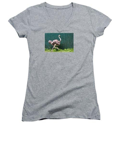Women's V-Neck T-Shirt (Junior Cut) featuring the photograph On The Run by Debra     Vatalaro
