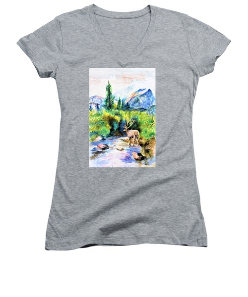 On The Stream Women's V-Neck T-Shirt