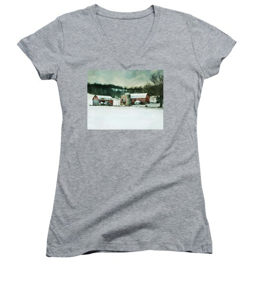 Women's V-Neck T-Shirt (Junior Cut) featuring the photograph Once Was Special by Julie Hamilton