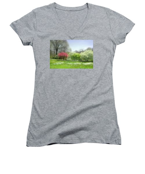 Women's V-Neck T-Shirt (Junior Cut) featuring the photograph One Love by Diana Angstadt