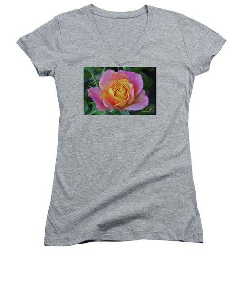 One Of Several Roses Women's V-Neck T-Shirt