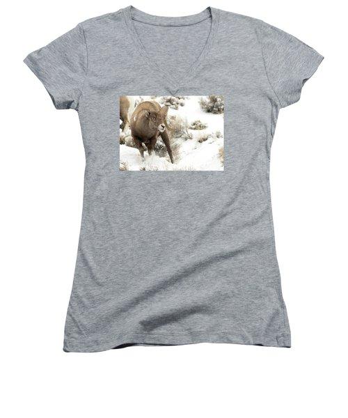 One Tough Guy Women's V-Neck T-Shirt