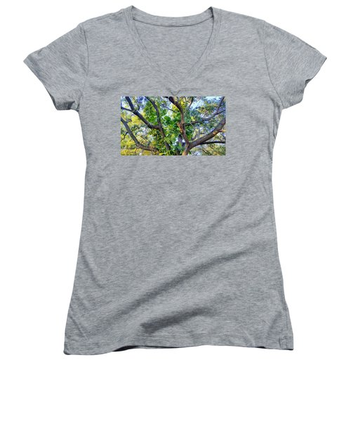 Oneness Discovery Women's V-Neck T-Shirt