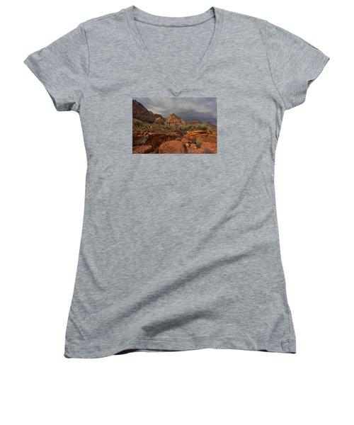 Only Close Women's V-Neck T-Shirt (Junior Cut) by Mark Ross
