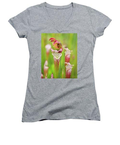 Women's V-Neck T-Shirt featuring the photograph Open Pitcher by Alan Raasch