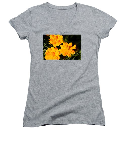 Women's V-Neck T-Shirt (Junior Cut) featuring the photograph Cosmos Trio by Sheila Brown
