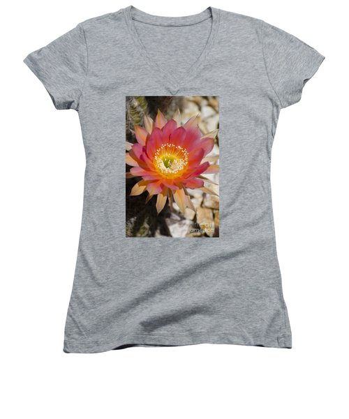 Orange Cactus Flower Women's V-Neck (Athletic Fit)
