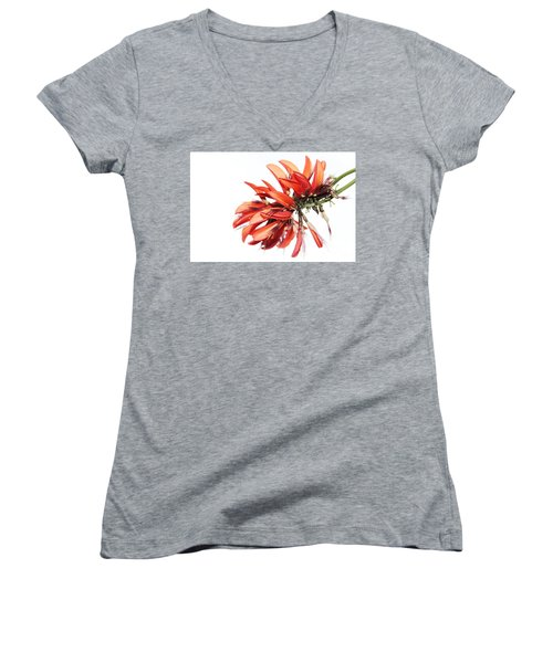Women's V-Neck T-Shirt featuring the photograph Orange Clover I by Stephen Mitchell