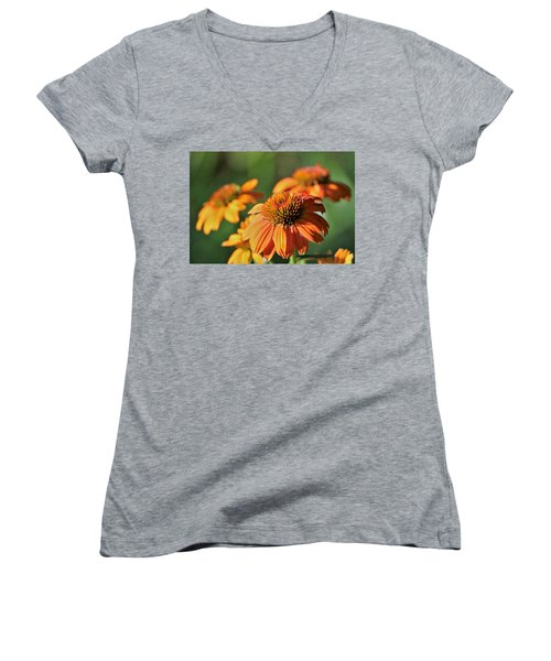 Orange Cone Flowers In Morning Light Women's V-Neck