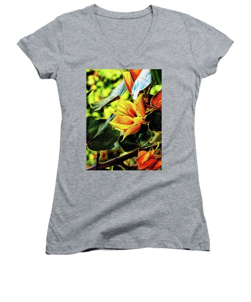 Orange Glory Women's V-Neck T-Shirt