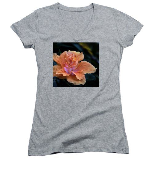 Orangecicle Women's V-Neck T-Shirt
