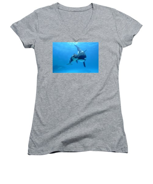 Orca Orcinus Orca Mother And Newborn Women's V-Neck