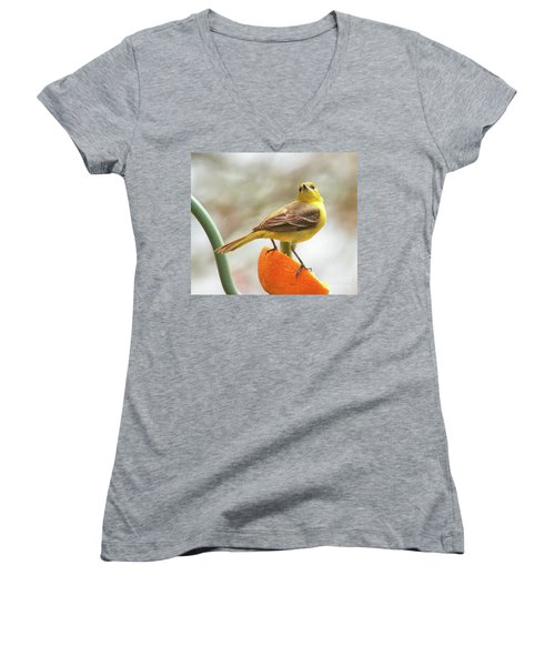Women's V-Neck T-Shirt featuring the photograph Orchard Oriole by Debbie Stahre