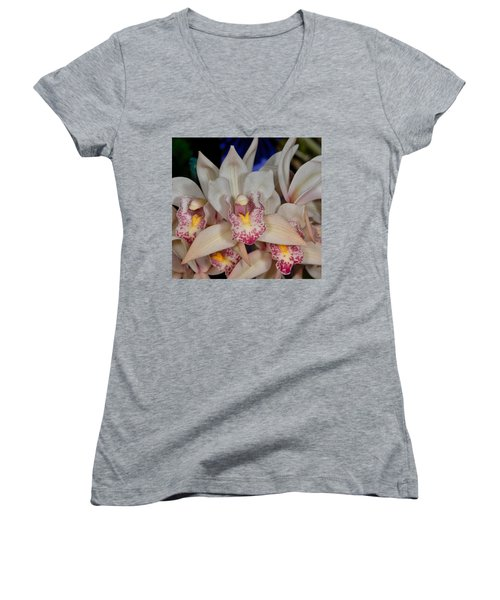 Orchid 348 Women's V-Neck (Athletic Fit)
