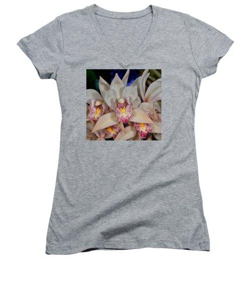 Orchid 348 Women's V-Neck T-Shirt