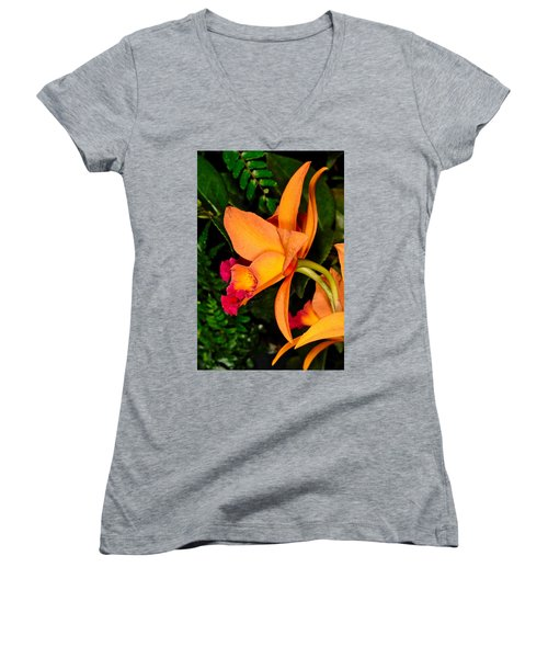 Orchid 355 Women's V-Neck (Athletic Fit)