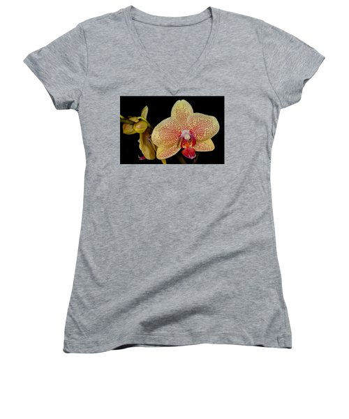 Orchid 377 Women's V-Neck (Athletic Fit)