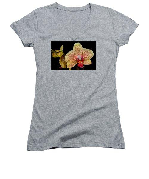 Orchid 377 Women's V-Neck T-Shirt
