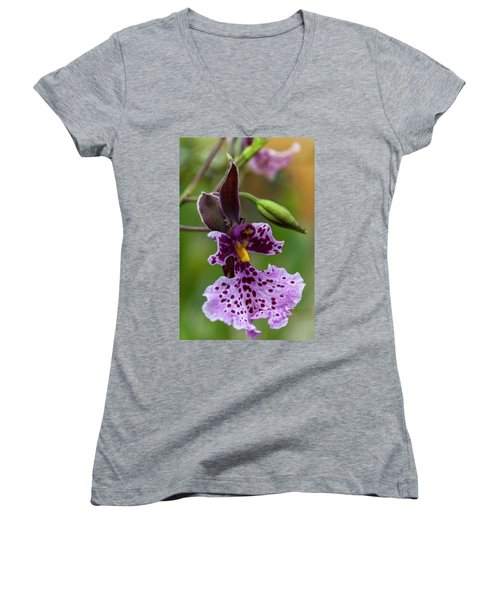 Women's V-Neck featuring the photograph Orchid - Caucaea Rhodosticta by Heiko Koehrer-Wagner