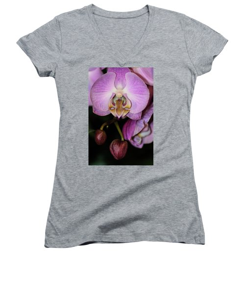 Orchid Life Women's V-Neck