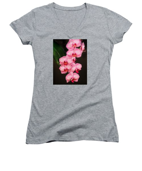 Orchid Women's V-Neck (Athletic Fit)