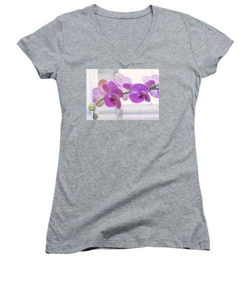 Orchid Spray Women's V-Neck T-Shirt