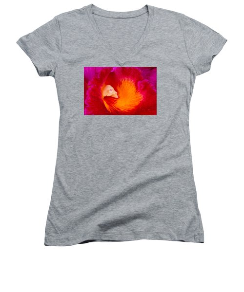 Orchid Vortex 458 Women's V-Neck