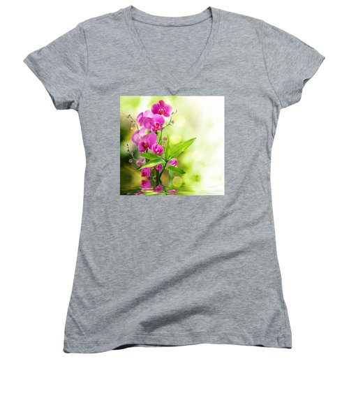 Orchidaceae Women's V-Neck T-Shirt (Junior Cut) by Thomas M Pikolin