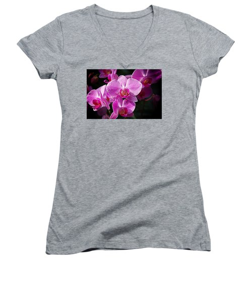 Orchids 4 Women's V-Neck T-Shirt (Junior Cut) by Karen McKenzie McAdoo