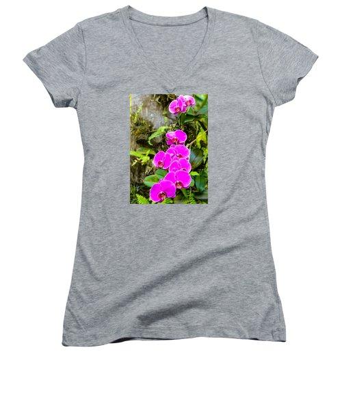 Orchids Women's V-Neck