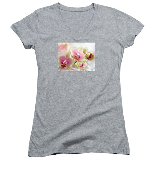 Orchids Women's V-Neck T-Shirt (Junior Cut) by Morag Bates