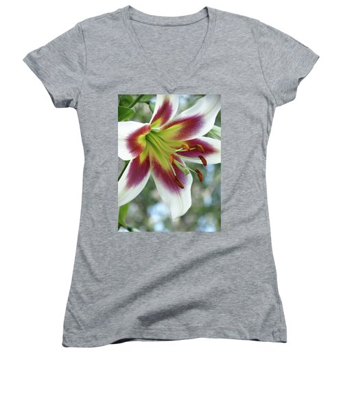 Oriental Lily In Summer Sunset Women's V-Neck T-Shirt (Junior Cut) by Rebecca Overton