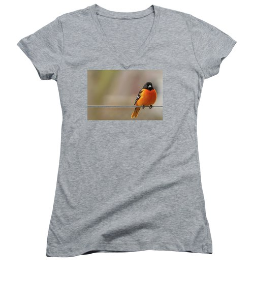 Oriole On The Line Women's V-Neck T-Shirt
