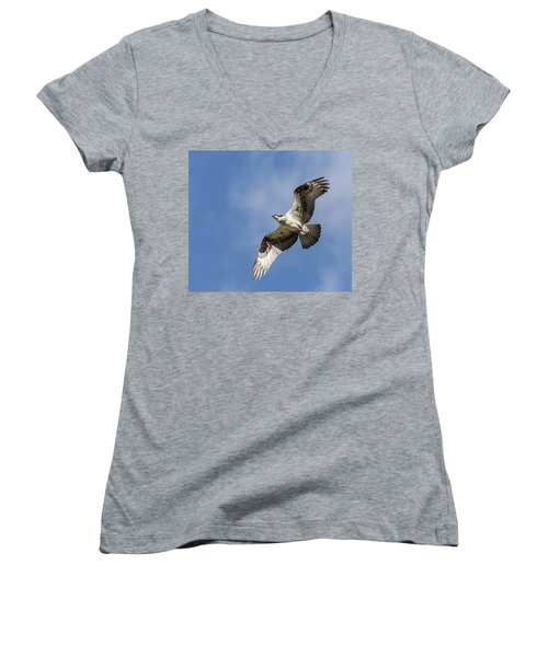 Women's V-Neck T-Shirt (Junior Cut) featuring the photograph Osprey 2017-3 by Thomas Young
