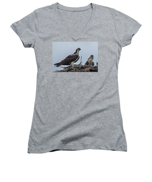 Osprey On A Nest Women's V-Neck T-Shirt (Junior Cut) by Paul Freidlund