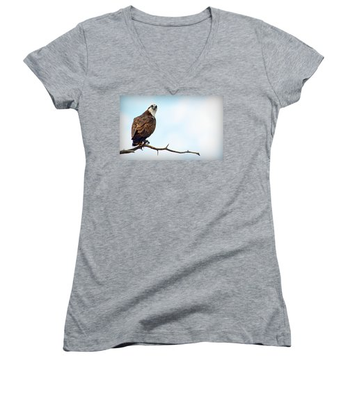 Women's V-Neck T-Shirt featuring the photograph Osprey Out On A Limb by AJ Schibig
