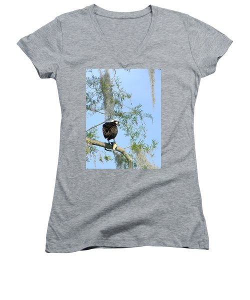 Osprey With A Fish Women's V-Neck T-Shirt