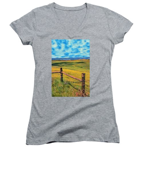 Other Side Of The Fence Women's V-Neck T-Shirt (Junior Cut) by Jeff Kolker