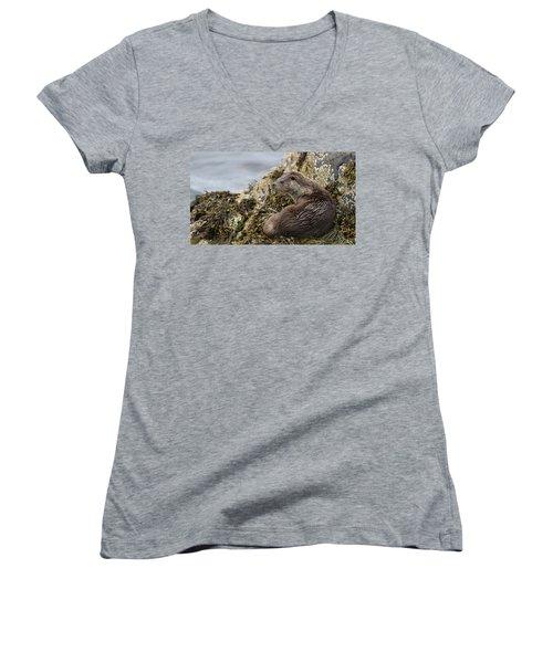 Otter Relaxing On Rocks Women's V-Neck