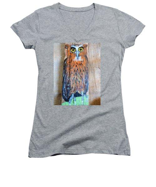 Owl Women's V-Neck T-Shirt (Junior Cut) by Ann Michelle Swadener