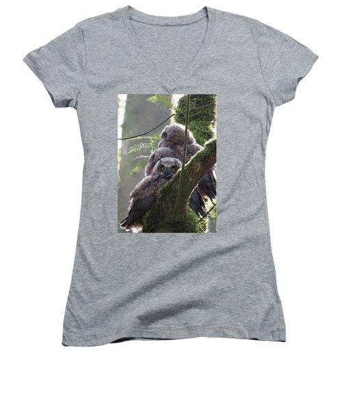Owl Morning Women's V-Neck T-Shirt