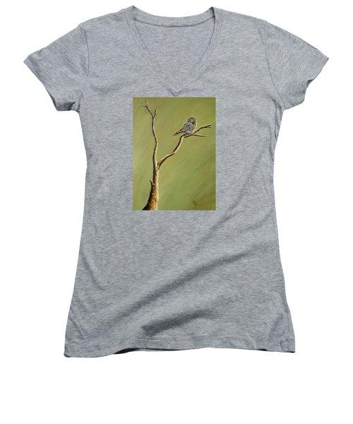 Owl On A Branch Women's V-Neck T-Shirt