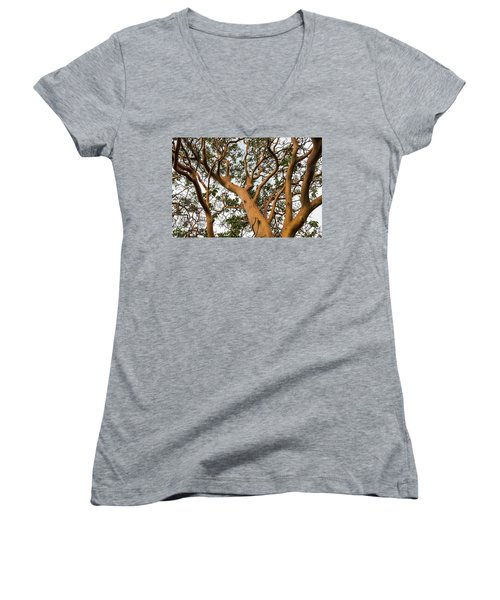 Pacific Madrone Trees Women's V-Neck
