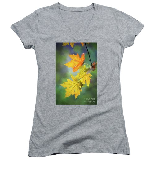 Painted Autumn Leaves Women's V-Neck T-Shirt