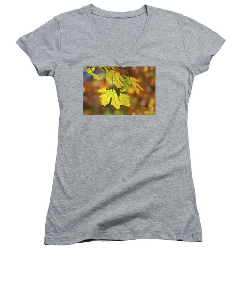 Painted Golden Leaves Women's V-Neck T-Shirt