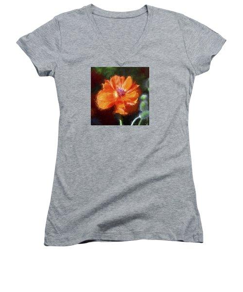 Painted Poppy Women's V-Neck T-Shirt (Junior Cut) by Christina Lihani