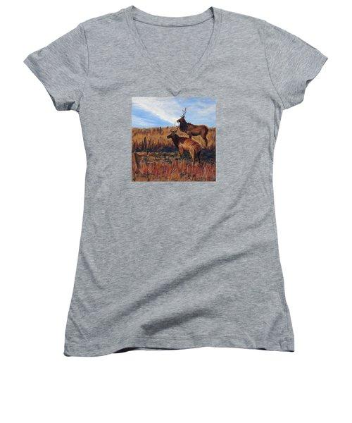 Pair O' Bulls Women's V-Neck T-Shirt