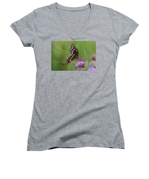 Palamedes Swallowtail And Friends Women's V-Neck